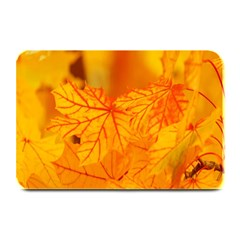 Bright Yellow Autumn Leaves Plate Mats