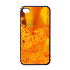 Bright Yellow Autumn Leaves Apple Iphone 4 Case (black)