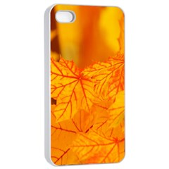 Bright Yellow Autumn Leaves Apple iPhone 4/4s Seamless Case (White)