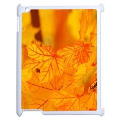Bright Yellow Autumn Leaves Apple Ipad 2 Case (white)