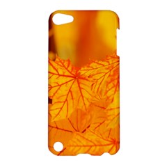 Bright Yellow Autumn Leaves Apple Ipod Touch 5 Hardshell Case