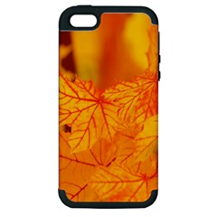 Bright Yellow Autumn Leaves Apple Iphone 5 Hardshell Case (pc+silicone)