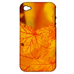 Bright Yellow Autumn Leaves Apple Iphone 4/4s Hardshell Case (pc+silicone)
