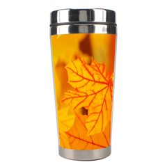 Bright Yellow Autumn Leaves Stainless Steel Travel Tumblers