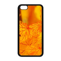 Bright Yellow Autumn Leaves Apple Iphone 5c Seamless Case (black)