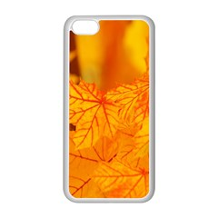Bright Yellow Autumn Leaves Apple Iphone 5c Seamless Case (white)