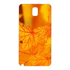 Bright Yellow Autumn Leaves Samsung Galaxy Note 3 N9005 Hardshell Back Case