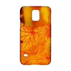 Bright Yellow Autumn Leaves Samsung Galaxy S5 Hardshell Case
