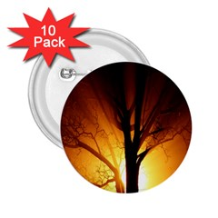 Rays Of Light Tree In Fog At Night 2 25  Buttons (10 Pack)