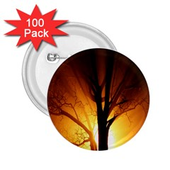 Rays Of Light Tree In Fog At Night 2 25  Buttons (100 Pack)