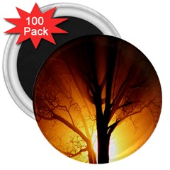 Rays Of Light Tree In Fog At Night 3  Magnets (100 Pack)