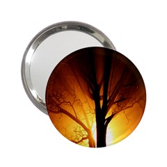 Rays Of Light Tree In Fog At Night 2 25  Handbag Mirrors