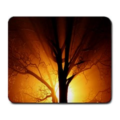 Rays Of Light Tree In Fog At Night Large Mousepads