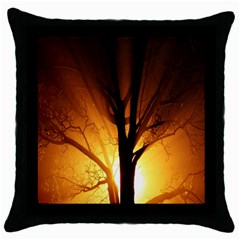 Rays Of Light Tree In Fog At Night Throw Pillow Case (black)