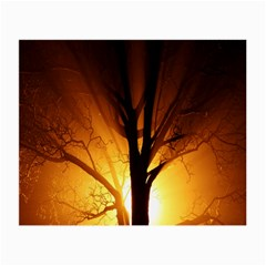Rays Of Light Tree In Fog At Night Small Glasses Cloth
