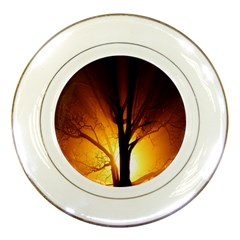 Rays Of Light Tree In Fog At Night Porcelain Plates