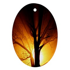 Rays Of Light Tree In Fog At Night Oval Ornament (two Sides)