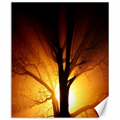 Rays Of Light Tree In Fog At Night Canvas 8  X 10