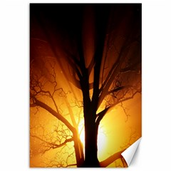 Rays Of Light Tree In Fog At Night Canvas 12  x 18