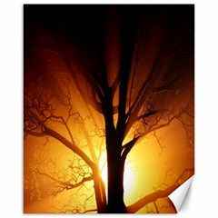 Rays Of Light Tree In Fog At Night Canvas 16  X 20
