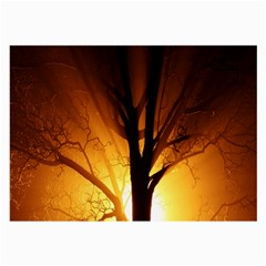 Rays Of Light Tree In Fog At Night Large Glasses Cloth