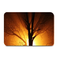 Rays Of Light Tree In Fog At Night Plate Mats