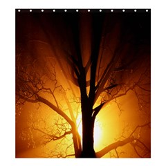 Rays Of Light Tree In Fog At Night Shower Curtain 66  X 72  (large)