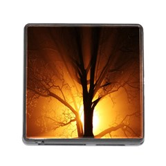Rays Of Light Tree In Fog At Night Memory Card Reader (Square)