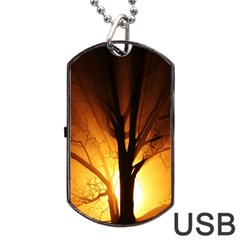 Rays Of Light Tree In Fog At Night Dog Tag Usb Flash (one Side)