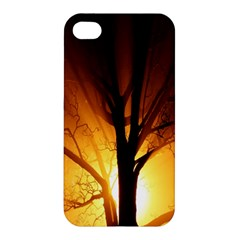 Rays Of Light Tree In Fog At Night Apple Iphone 4/4s Hardshell Case