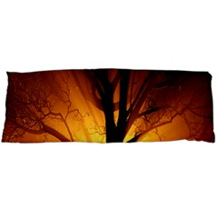 Rays Of Light Tree In Fog At Night Body Pillow Case Dakimakura (two Sides)
