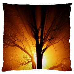 Rays Of Light Tree In Fog At Night Large Cushion Case (two Sides)