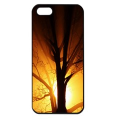 Rays Of Light Tree In Fog At Night Apple Iphone 5 Seamless Case (black)