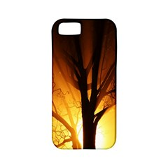 Rays Of Light Tree In Fog At Night Apple Iphone 5 Classic Hardshell Case (pc+silicone)