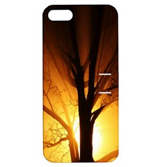 Rays Of Light Tree In Fog At Night Apple Iphone 5 Hardshell Case With Stand
