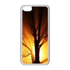Rays Of Light Tree In Fog At Night Apple Iphone 5c Seamless Case (white)