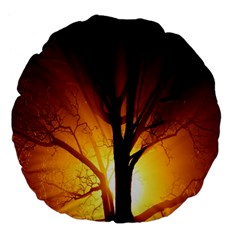 Rays Of Light Tree In Fog At Night Large 18  Premium Flano Round Cushions