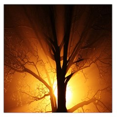 Rays Of Light Tree In Fog At Night Large Satin Scarf (square)
