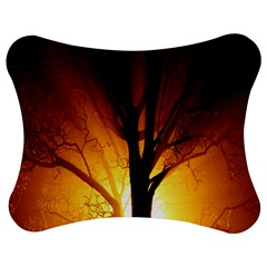Rays Of Light Tree In Fog At Night Jigsaw Puzzle Photo Stand (bow)