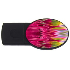 Abstract Pink Colorful Water Background Usb Flash Drive Oval (2 Gb)