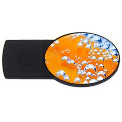 Bubbles Background Usb Flash Drive Oval (4 Gb)