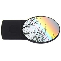Rainbow Sky Spectrum Rainbow Colors USB Flash Drive Oval (4 GB)