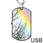 Rainbow Sky Spectrum Rainbow Colors Dog Tag USB Flash (Two Sides) Front
