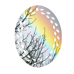 Rainbow Sky Spectrum Rainbow Colors Oval Filigree Ornament (two Sides)