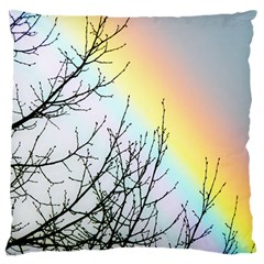 Rainbow Sky Spectrum Rainbow Colors Large Flano Cushion Case (two Sides)