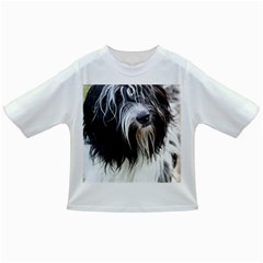 Schapendoes Infant/Toddler T-Shirts