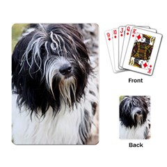 Schapendoes Playing Card