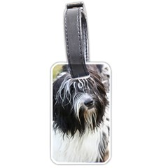 Schapendoes Luggage Tags (One Side)