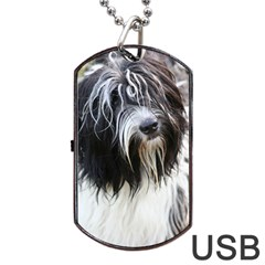 Schapendoes Dog Tag USB Flash (Two Sides)