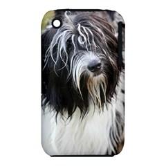 Schapendoes iPhone 3S/3GS